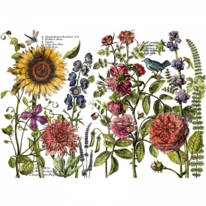 "TRANSFER  - IOD Decor Transfers ""Botanists´s Journal"""