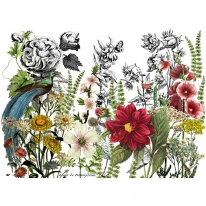 "TRANSFER  - IOD Decor Transfers ""Midnight Garden"""